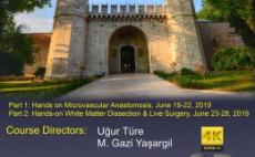 10th Istanbul Yasargil Microneurosurgery Course